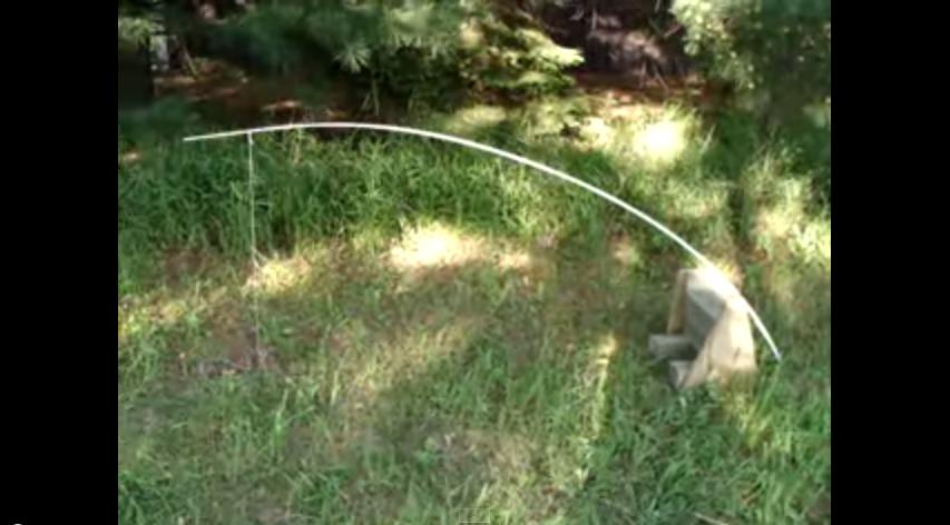 Squirrel_Trap
