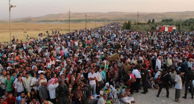 Revealed: The Name Backing the Refugee Chaos