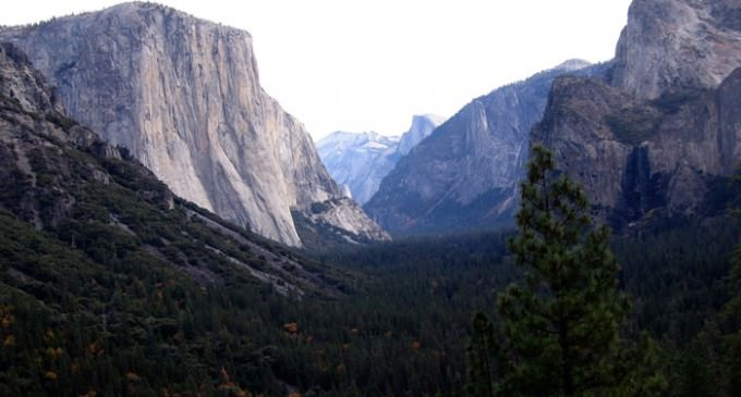 Plague Strikes Child in Yosemite