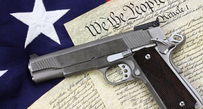7th Circuit Court: Illegal Aliens Have Second Amendment Rights