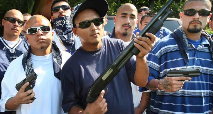 Los Angeles Gangs Declare They Will Kill 100 People Over 100 Days