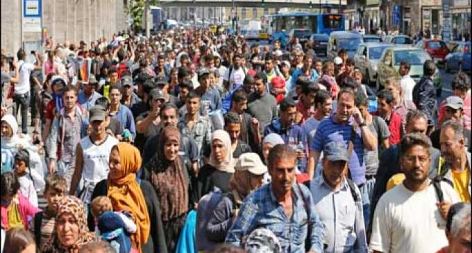 Massive Immigration In Europe Is Creating Chaos In Austria