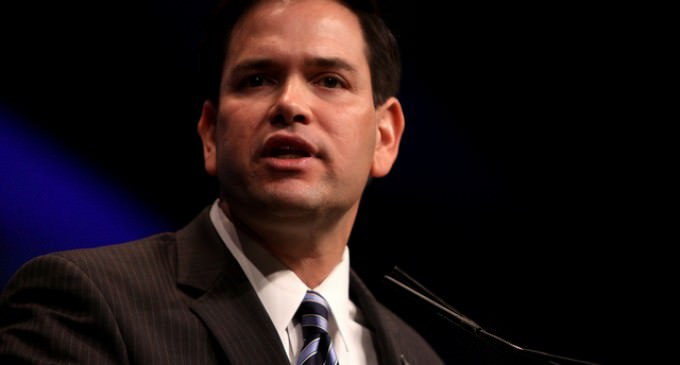 Rubio Would Close Mosques, Cafes, Internet Sites if They Inspire Radicalization