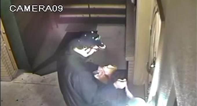 FBI Offering $5,000 Reward For 'Bacon Hate Crime'