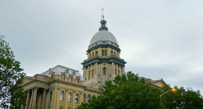 Illinois Resolution Declares 2nd Amendment Not Individual Right