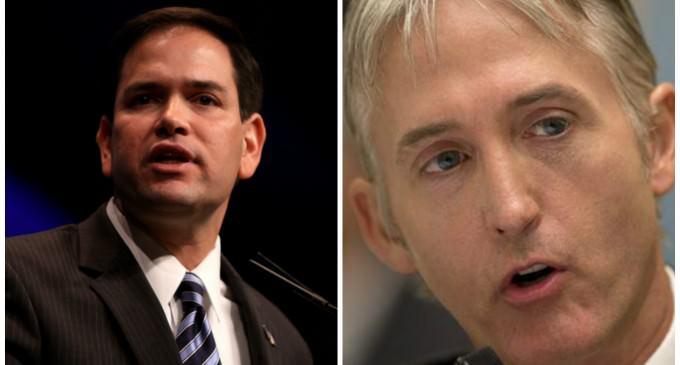 "Trey Gowdy Endorses Marco Rubio, Praises Him As A ""Rock Solid Conservative"""