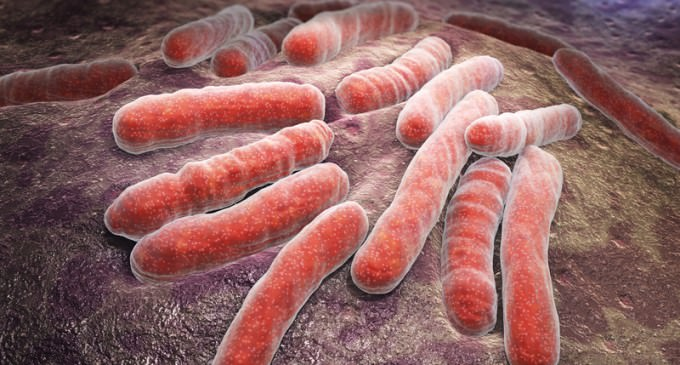 Diseases Wiped Out Decades Ago Reappear In US