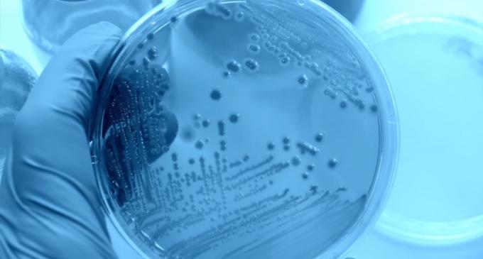 """Phantom Menace"" the Antibiotic-resistant Super-bug Poised to Kill Millions"
