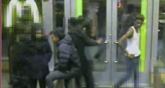 Footage Released of Marine Beaten by Black Lives Matter Thugs