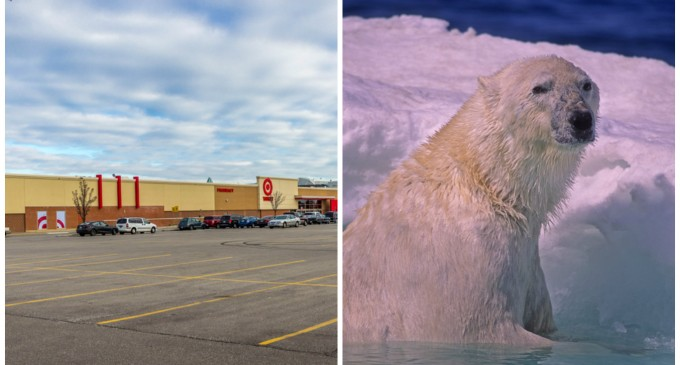 Target CEO: Climate Change — not Bathroom Policy — Responsible for Sales Plummet