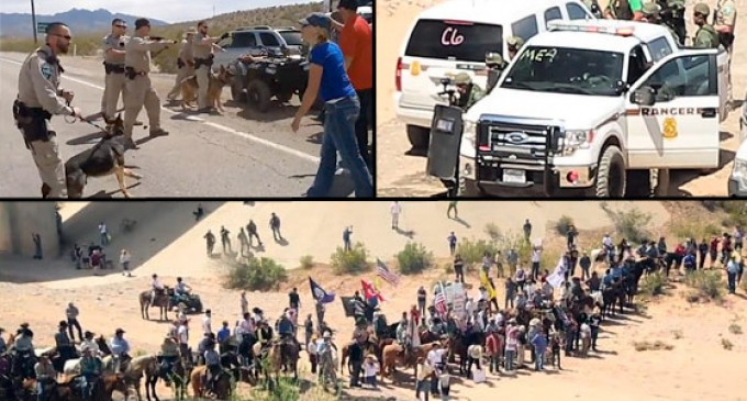 Another Bundy Standoff Looms as Groups call for Feds to Seize Livestock