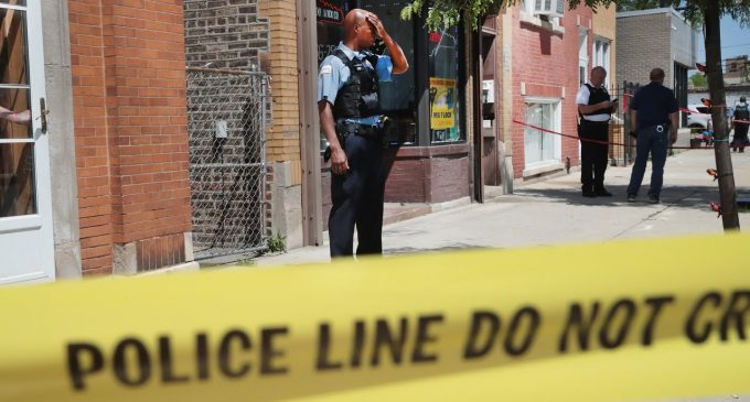 600 Die In Chicago