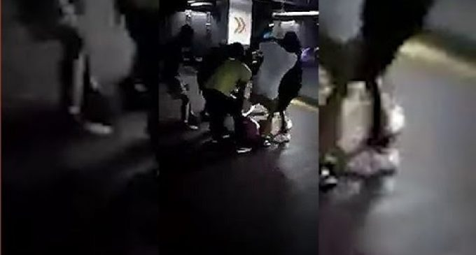 Black Lives Matter Activists Beats Up White Man Begging for Mercy