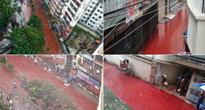 Streets Run with Blood as Muslims Sacrifice Animals in the Feast of Eid