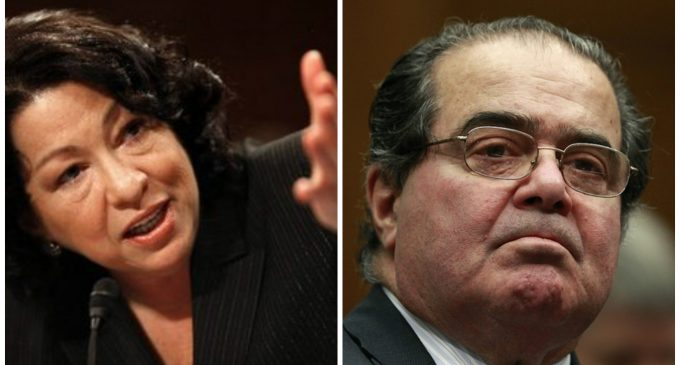"""Supreme Court Justice Sotomayor """"Might Have Used a Bat"""" on Justice Scalia"""