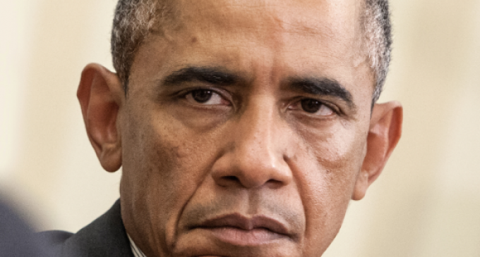 Obama's Grip Increases as Government Funds New Anti-American Leftwing Groups