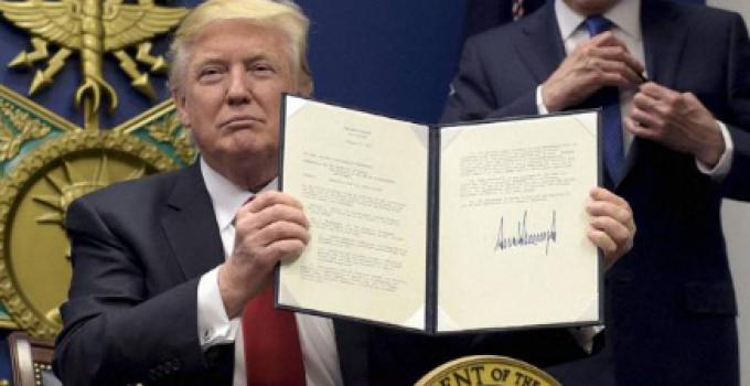 trump_signs_001