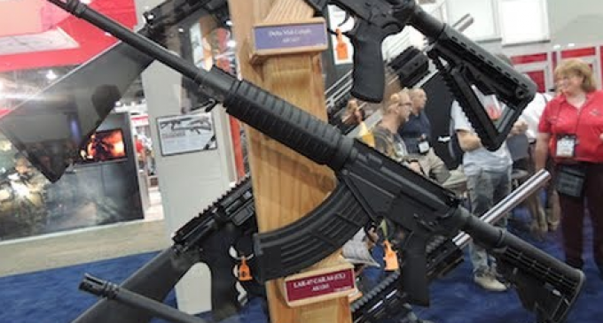 Circuit Court Reverses Ruling Protecting Semiautomatic Rifles; Decision Still in State of Flux