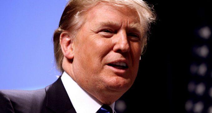 The First 50: Trump's Biggest Accomplishments So Far