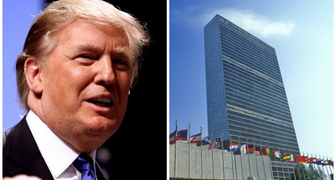 President Trump Puts the UN Budget on the Chopping Block