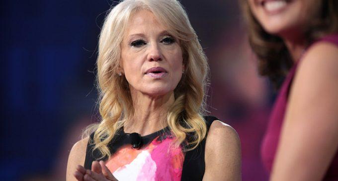 Liberal Democrat Makes Crude Remark About Trump Aide Kellyanne Conway