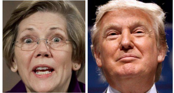 Donald Trump: Running Against Warren Would Be a 'Dream Come True'