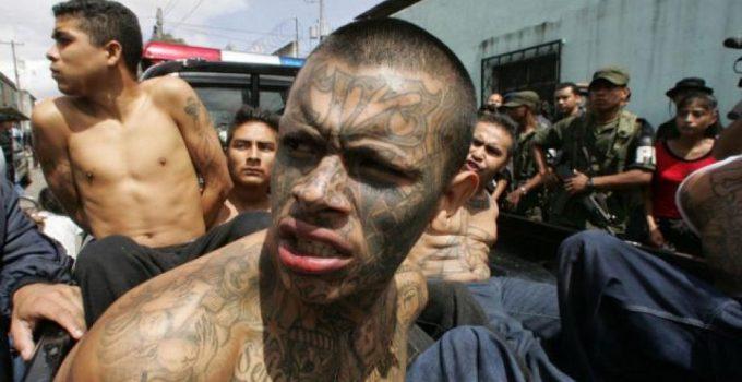 el salvador gang