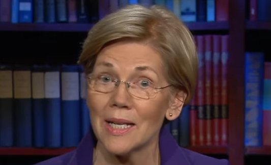 Senator Warren to Trump: We are Never, Ever Going to Build Your Stupid Wall