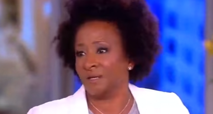 Wanda Sykes: Repealing Obamacare is Racist