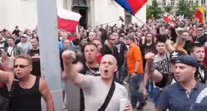 Czech Parliament Ignores EU, Passes More Gun Rights