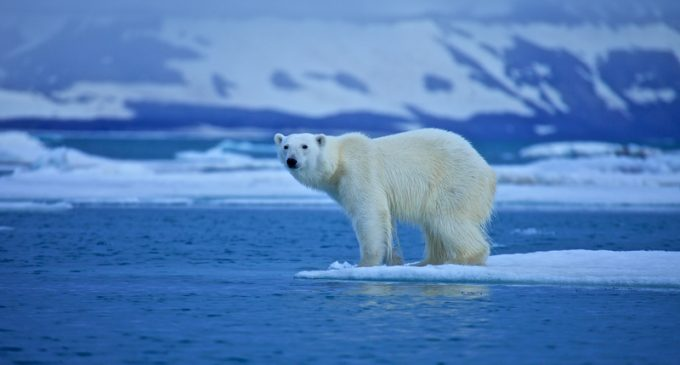 58 New Studies Demonstrate Today's Warming Isn't Global, Unprecedented or Remarkable