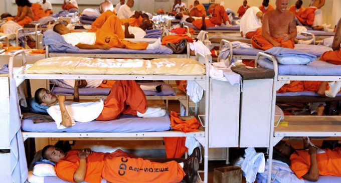 Convicts Offered Reduced Jail Time in Return for Choosing Sterilization