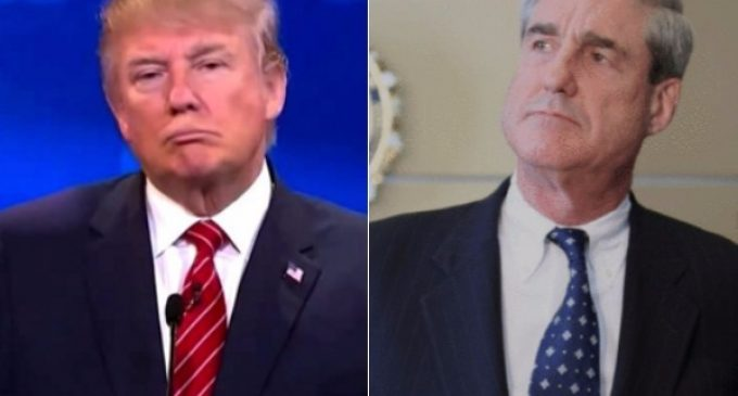 Trump Preps to Take On Mueller's All-Star Roster of Liberal Activists