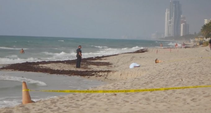 Federal Tax and Visa Prosecutor Found Dead on Debbie Wasserman Schultz's Beach