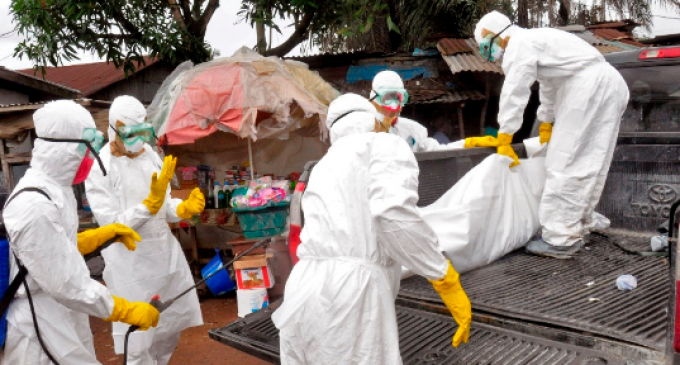 WHO: Bubonic Plague Alert Issued for 9 Countries