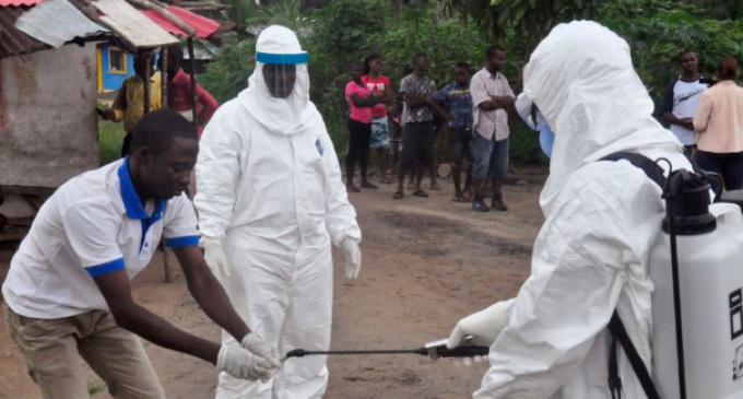 """New Incurable, Highly Infectious Form of """"Ebola"""" Discovered"""