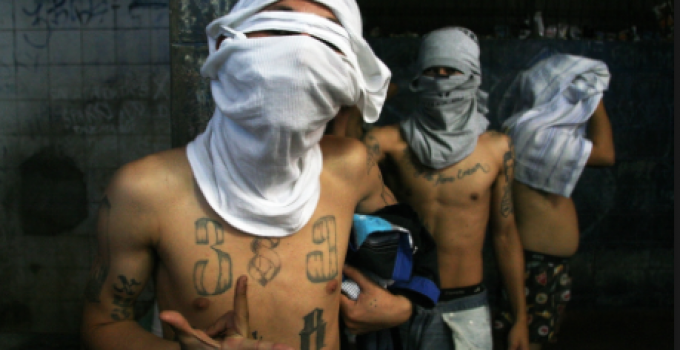 Mexican Drug Cartels Agree to Stop Assassinating Politicians Under One Condition