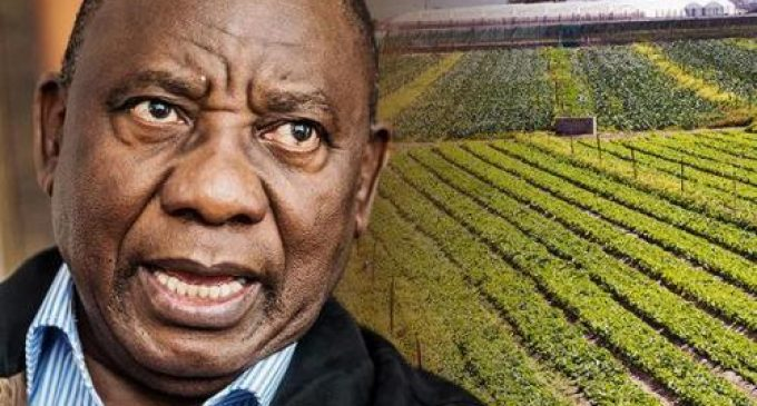 Seizure of White-owned Farmland Begins in South Africa