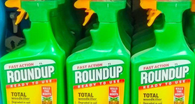Monsanto Slammed with $289M Verdict in Landmark Roundup Cancer Trial