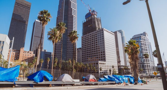Dr. Drew: Outbreak of Bubonic Plague Imminent in Los Angeles