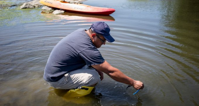 Fecal Bacteria Reaches Dangerous Levels in California's Waterways