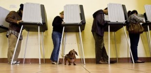 Federal Court Rules Texas Voter ID Law Discriminatory