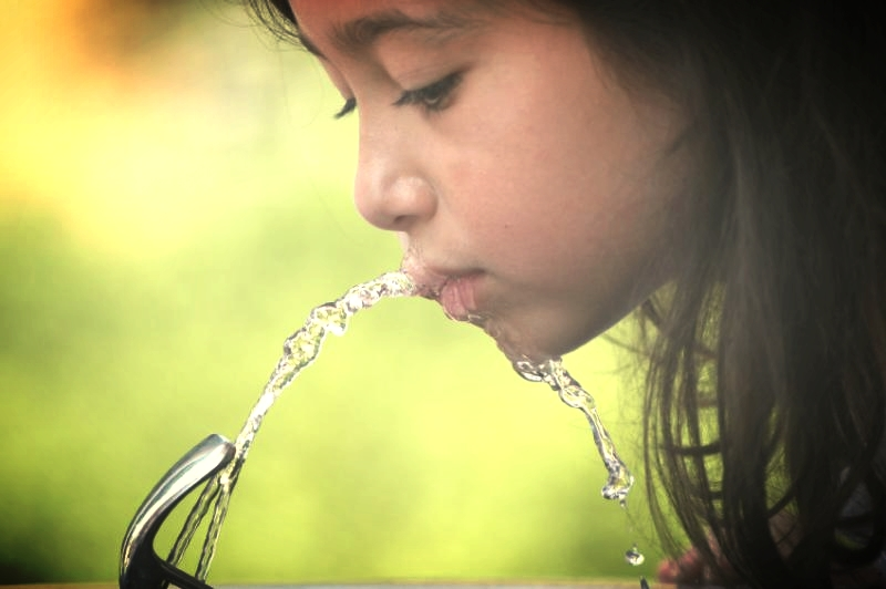 The Lancet: Your Water And Your Toothpaste Are Making You Stupid