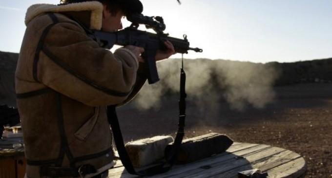 Arizona Senate Begins Nullification of Federal Gun Laws