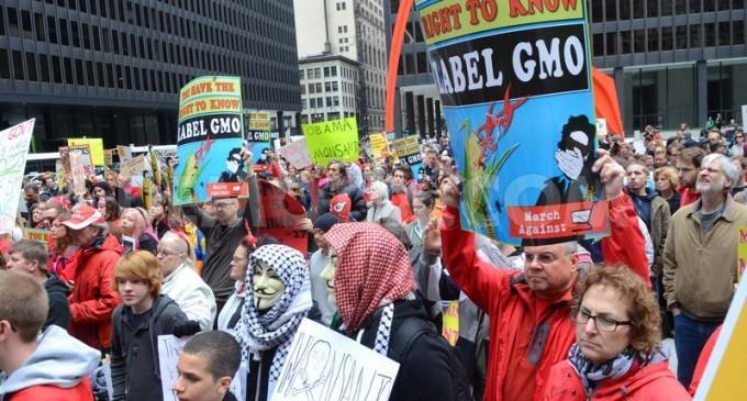 Vermont Passes GMO Labeling Law: Monsanto Immediately Files Suit