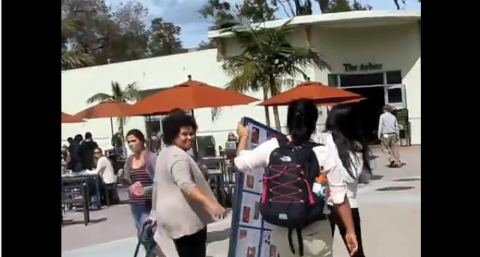 UC Santa Barbara Professor Assaults Young Pro-Life Activist – Steals Pro-Life Sign